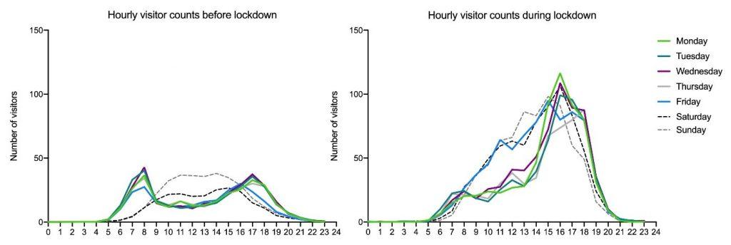 Grafik: Stündliche Besucherzahlen im Kottenforst je Wochentag vor und während Covid-19-Beschränkungen, Autor: Jakob Derks/EFI. Die Grafik kann im Rahmen der Berichterstattung unter Nennung des Autors unentgeltlich verwendet werden.